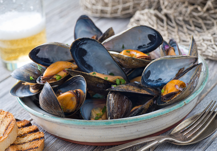 bluemussels